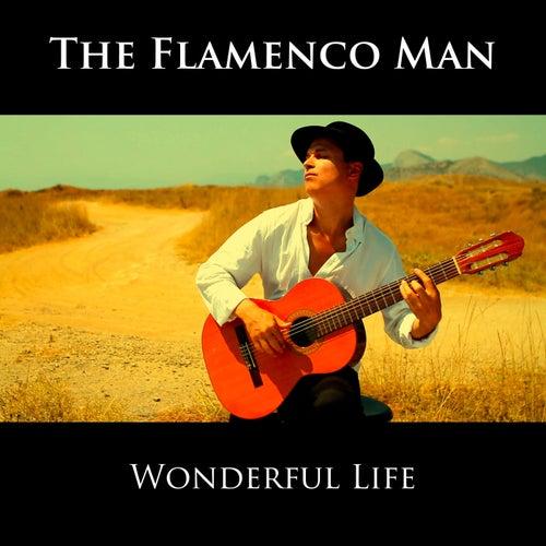 Wonderful Life (Instrumental) von The Flamenco Man