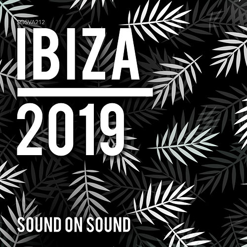 Ibiza 2019 - EP by Various Artists