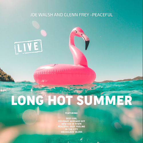 Long Hot Summer (Live) de Joe Walsh