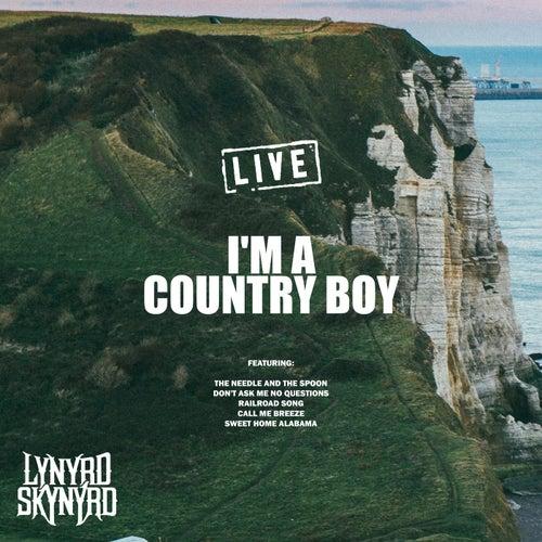 I'm a Country Boy (Live) de Lynyrd Skynyrd