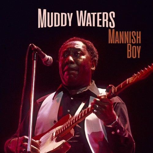 Mannish Boy de Muddy Waters