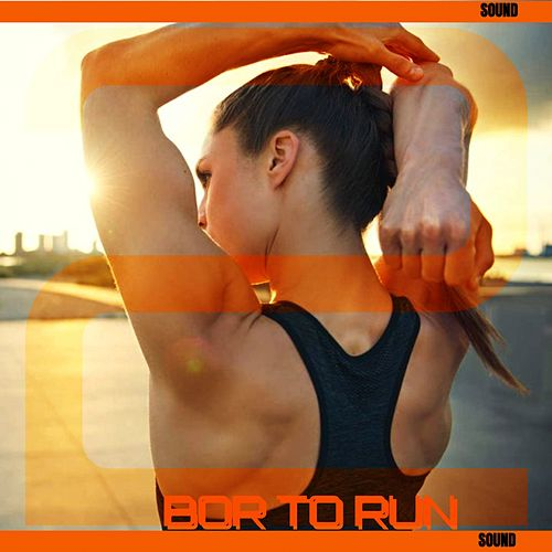Bor to Run, Vol. 2 by The Sound