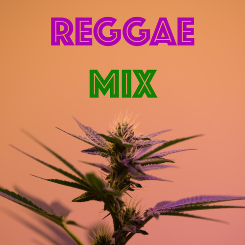 Reggae Mix de Various Artists