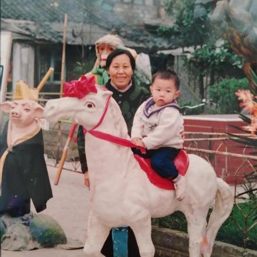 阿婆 de 杨旭凯
