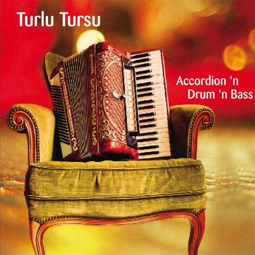 Accordion 'n Drum 'n Bass by Turlu Tursu