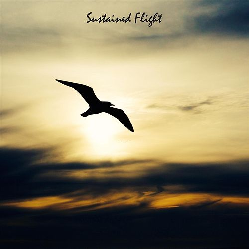 Sustained Flight by Sleep Music Guys from I'm In Records