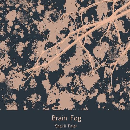 Brain Fog by Shai-li Paldi