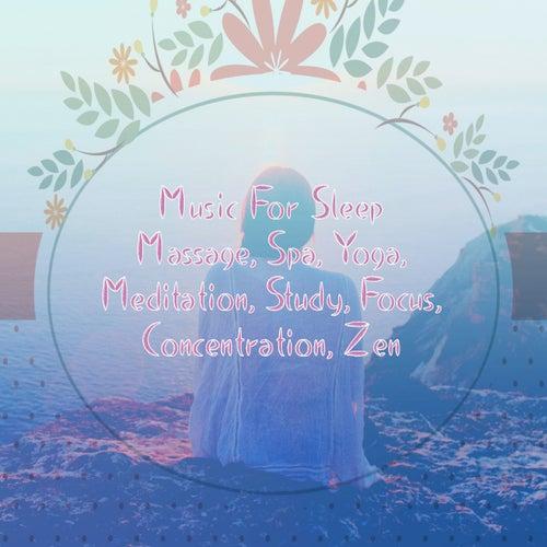 Music for Sleep: Massage, Spa, Yoga, Meditation, Study, Focus, Concentration, Zen de Various Artists