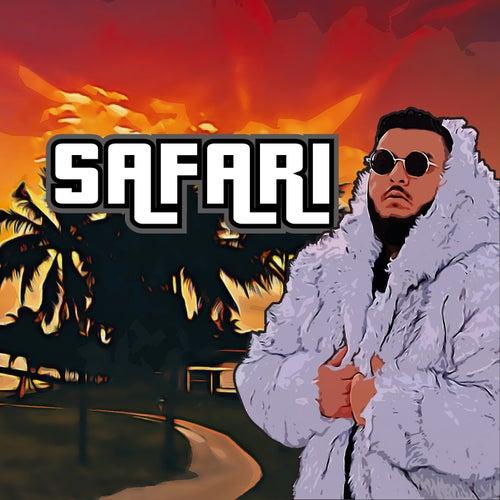 Safari van Bas