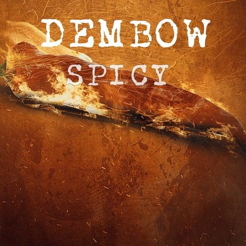 Dembow Spicy de Various Artists