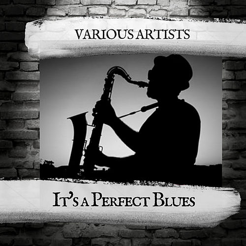 It's a Perfect Blues by Various Artists