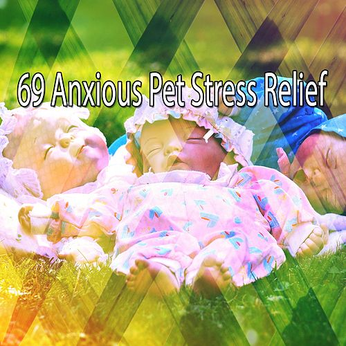 69 Anxious Pet Stress Relief von Best Relaxing SPA Music