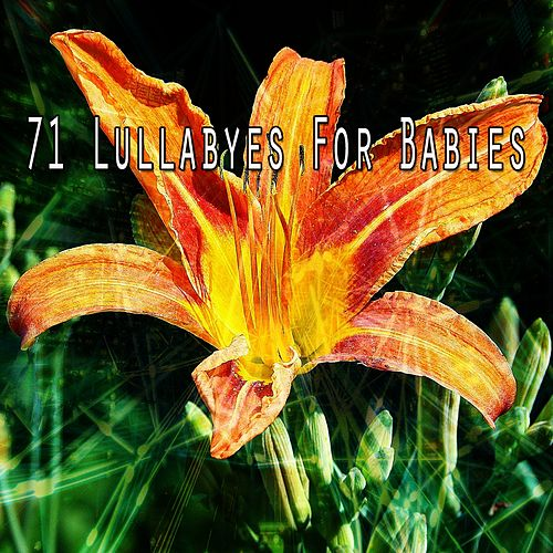 71 Lullabyes for Babies by Einstein Baby Lullaby Academy
