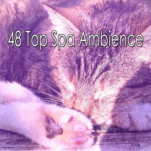 48 Top Spa Ambience by Sounds Of Nature