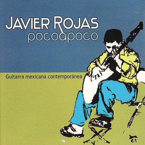 Poco a Poco by Javier Rojas