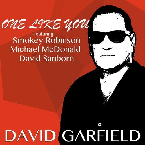 One Like You (Radio Version) de David Garfield