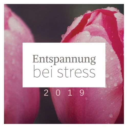 Entspannung bei Stress 2019 von Entspannungsmusik Dream