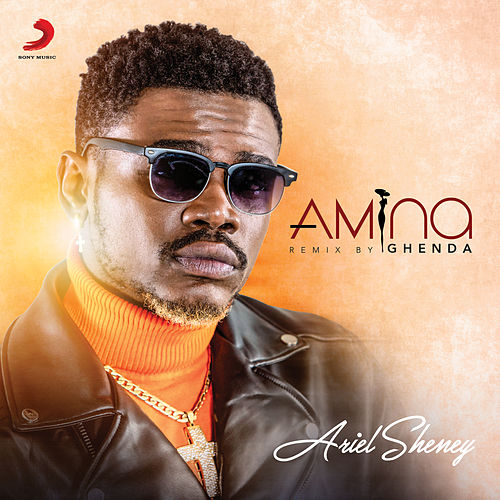 Amina (Ghenda Remix) by Ariel Sheney