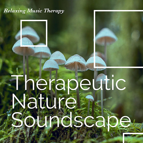 Therapeutic Nature Soundscape de Relaxing Music Therapy