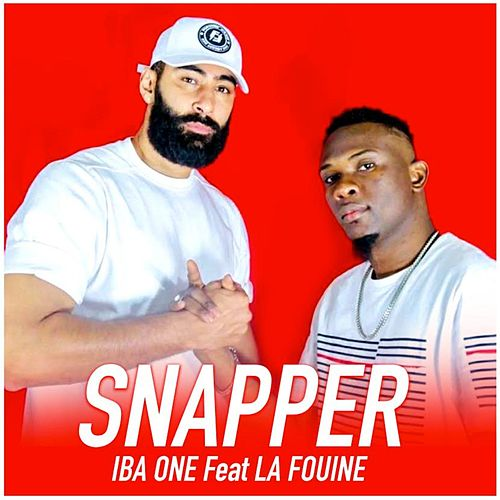 Snapper by Iba One