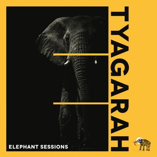Tyagarah de The Elephant Sessions