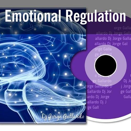 Emotional Regulation for the Club by DJ Jorge Gallardo