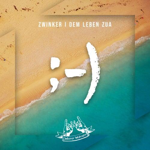 Zwinker i dem Leben zua (Radio Edit) von Wiener Wahnsinn