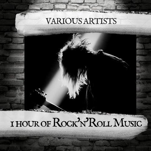 1 hour of Rock'n'Roll Music de Various Artists