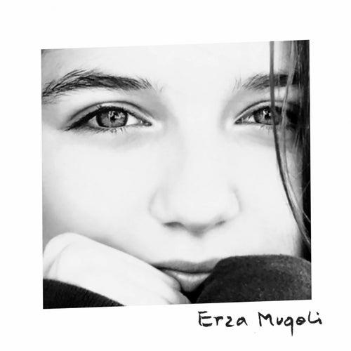 Dommage de Erza Muqoli
