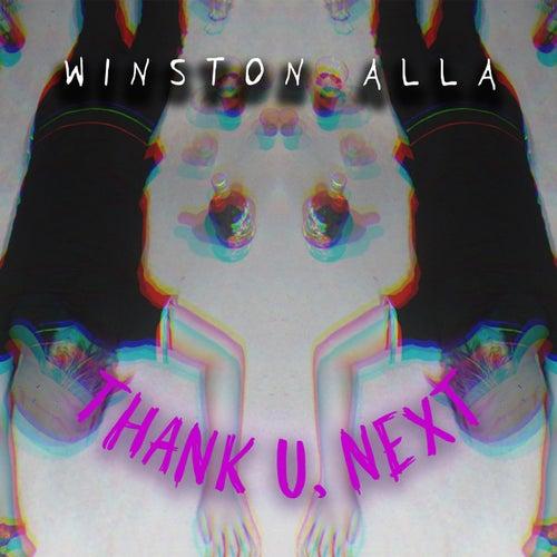 thank u, next (Instrumental) de Winston Alla