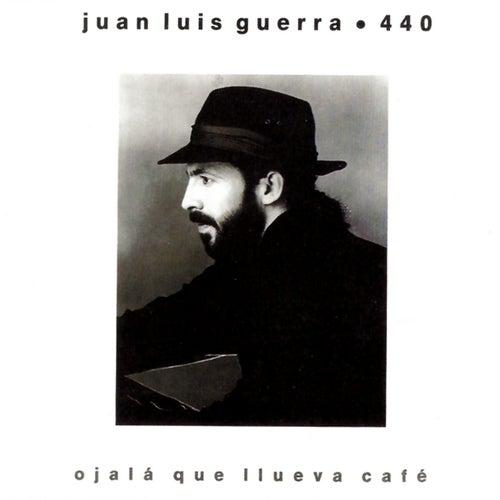 Ojala Que Llueva Cafe de Juan Luis Guerra