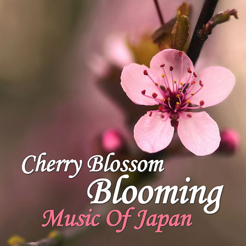 Cherry Blossom Blooming: Music Of Japan by Spirit