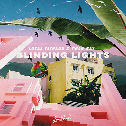 Blinding Lights by Lucas Estrada