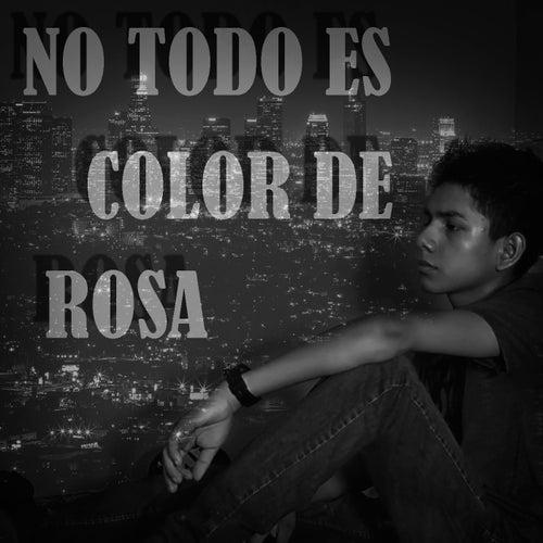 No Todo Es Color de Rosa by Zahiro ZRC