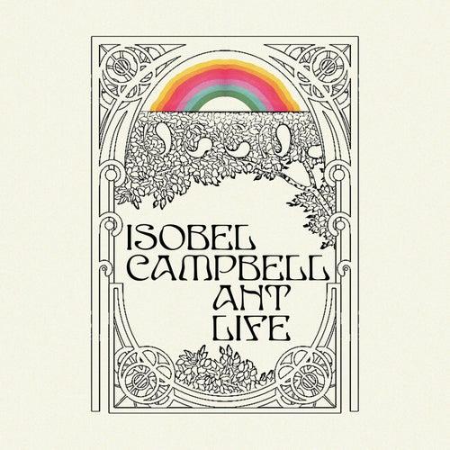 Ant Life de Isobel Campbell