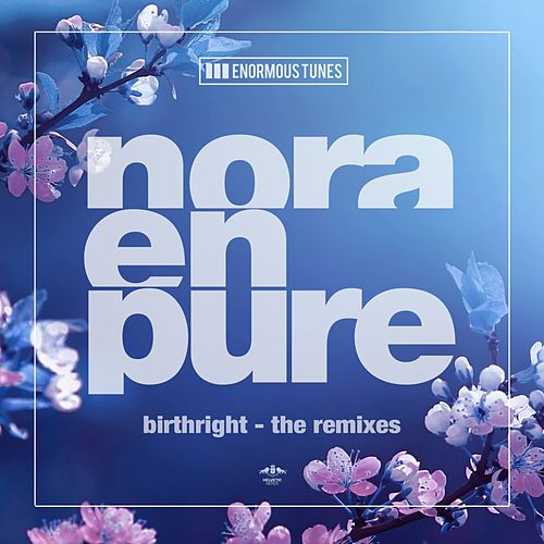 Birthright (The Remixes) by Nora En Pure