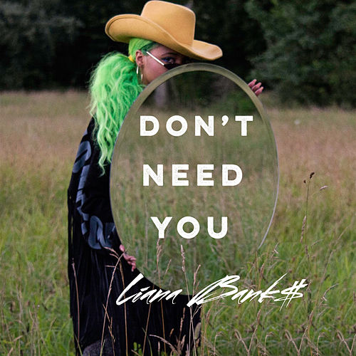 Don't Need You by Liana Banks