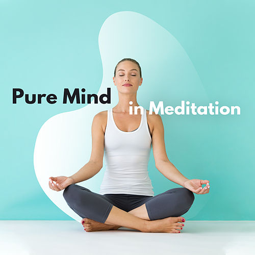 Pure Mind in Meditation: Meditation Music Zone, Relaxing Sounds for Relaxing Yoga, Reduce Stress, Zen, Reiki de Meditação e Espiritualidade Musica Academia