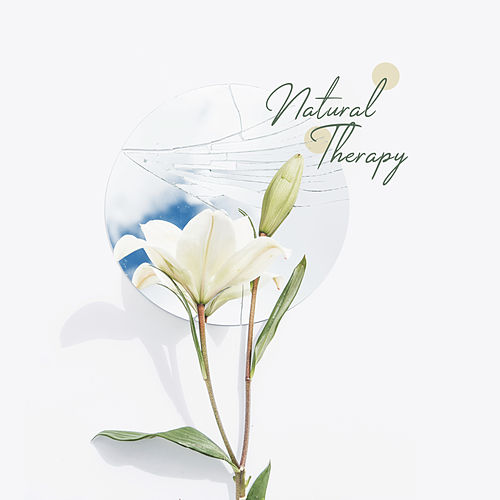 Natural Therapy: Relaxing Music for Inner Harmony, Spa, Massage Music, Zen, Relaxing Music Therapy, Wellness Sounds de Massage Tribe
