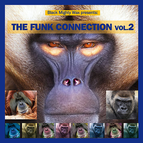 Black Mighty Wax Presents: The Funk Connection, Vol. 2 de Various Artists
