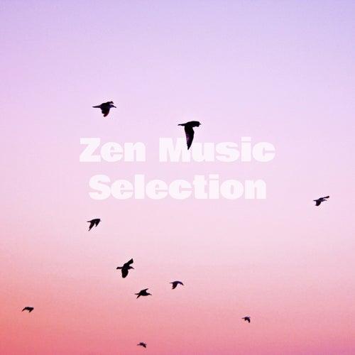 Zen Music Selection de Various Artists