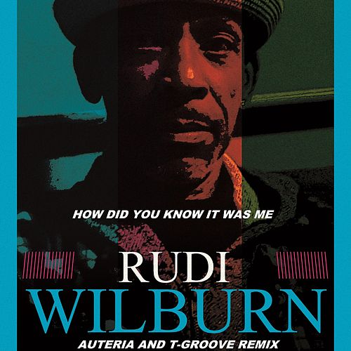 How Did You Know It Was Me? (Auteria & T-Groove Mix) von Rudi Wilburn