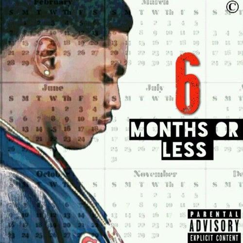 6 Months or Less von Alex