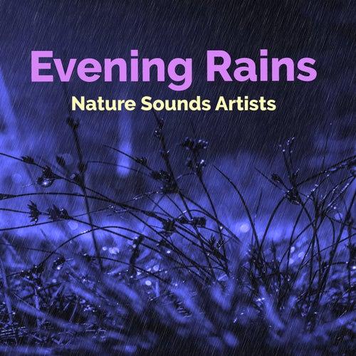 Evening Rains de Nature Sounds Artists