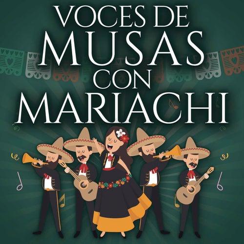 Voces De Musas Con Mariachi by Various Artists