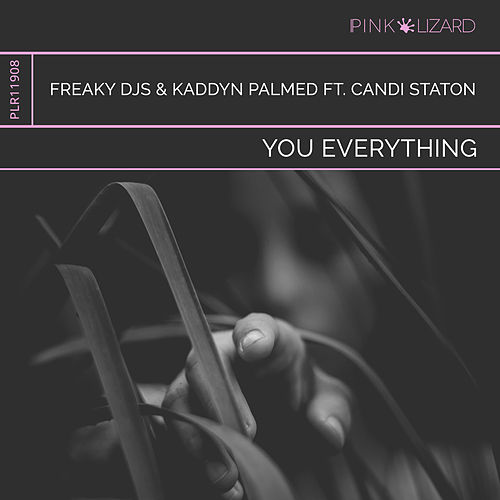You Everything (Radio Edit) by Freaky DJ's