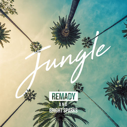 Jungle von Remady
