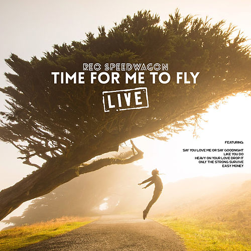 Time For Me To Fly (Live) by REO Speedwagon