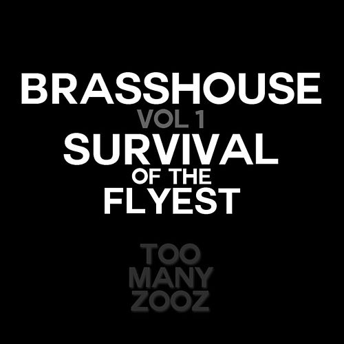 Brasshouse, Vol. 1: Survival of the Flyest by Too Many Zooz