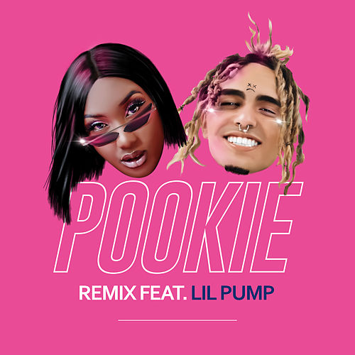 Pookie (feat. Lil Pump) (Remix) by Aya Nakamura